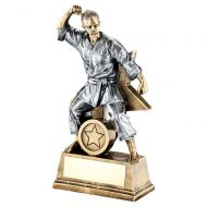 Bronze Gold Pewter Female - Ladies Martial Arts Figure With Star Backing Trophy : New 2019