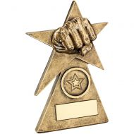 Bronze/Gold Martial Arts Star On Pyramid Base Trophy - - 4in
