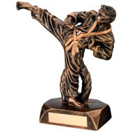 Bronze/Gold Resin Karate Figure Trophy 7.5in