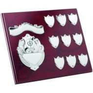 Rosewood Plaque Chrome Fronts 9 Record Shields 8 X 10in
