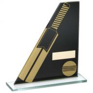Black/Gold Printed Glass Plaque Cricket Bat/Ball Trophy - 5.75in