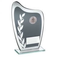 Grey/Silver Glass Plaque Cricket Trophy 7.25in