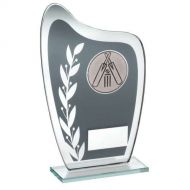 Grey/Silver Glass Plaque Cricket Trophy 6.5in