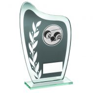 Grey/Silver Glass Plaque Lawn Bowls Trophy 6.5in